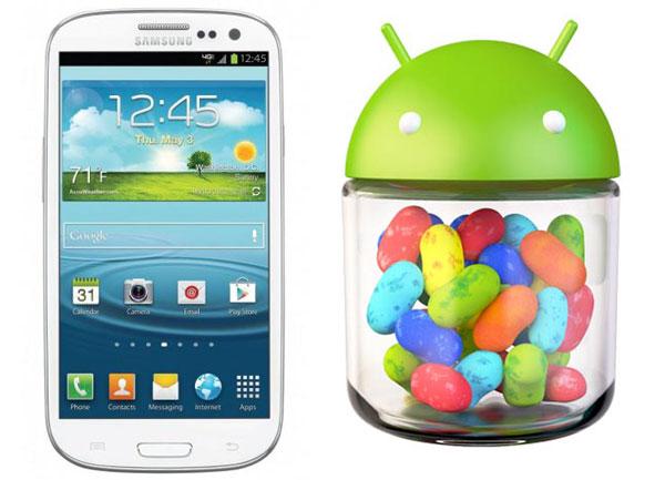 Samsung Galaxy S III + Jelly Bean