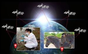 Microsoft CO-GPS