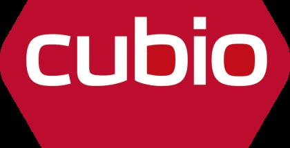 Cubion logo
