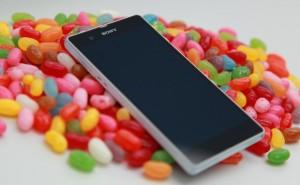 Sony + Jelly Bean