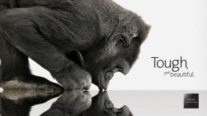 Corning Gorilla Glass: Tought yet Beautiful
