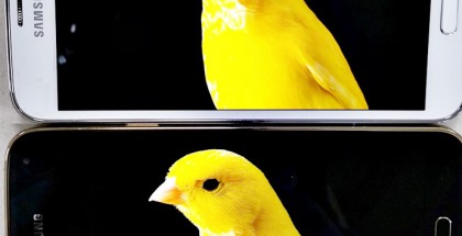 Yllä Samsung Galaxy S5 ja alla sen uusi LTE-A-versio