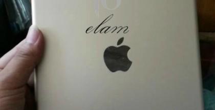 Vuotokuvassa iPad Air 2:n takakansi