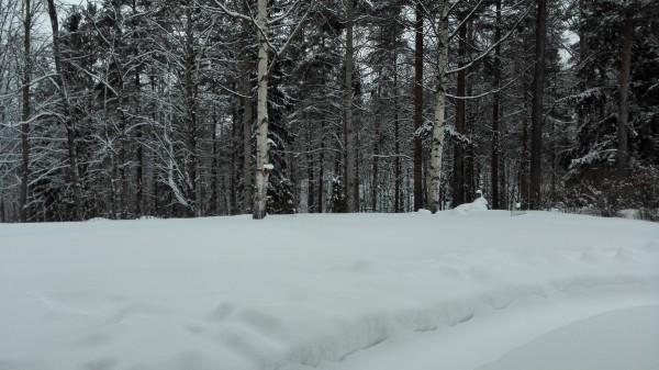 Talvinen ulkokuva (Ascend Mate7)