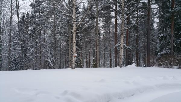 Talvinen ulkokuva (Note 4)