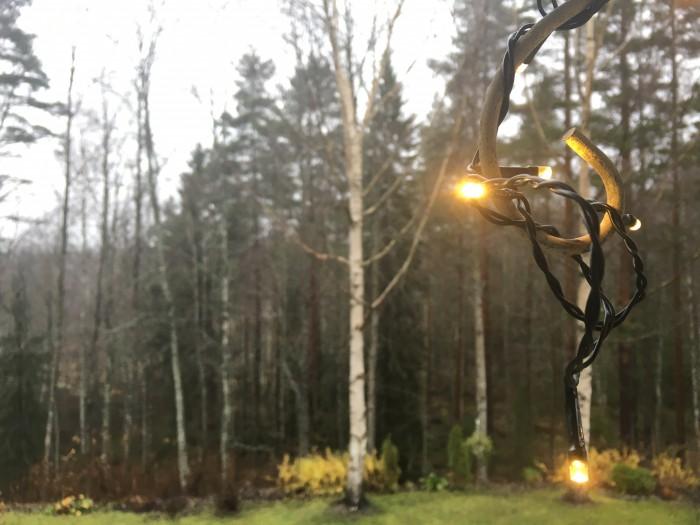 Lähikuva haastavammissa valaistusolosutheissa. Kirkkaat alueet iPhone 6s:n kamera polttaa välillä puhki