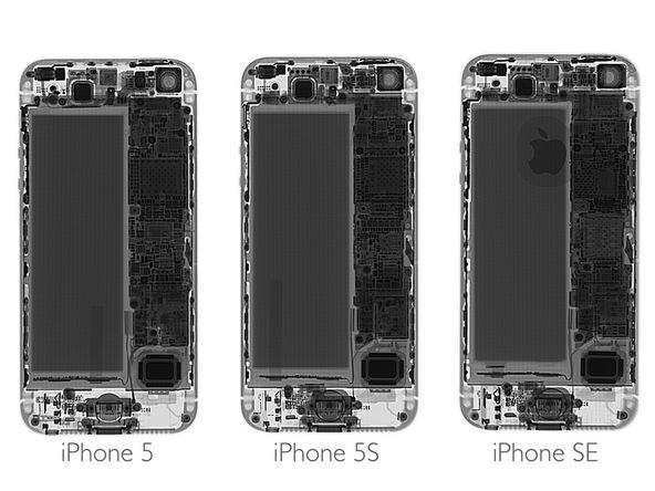 iFixitin vertailussa iPhonet 5, 5s ja SE. Silmiinpistävin ero on uusimman mallin logo takakuoressa.