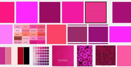 Fuchsia-väri eli fuksianpunainen Googlen kuvahaussa.
