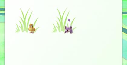 Läheiset Pokémonit näkyvät nyt Sightings-osiossa.