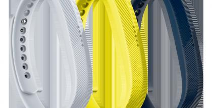 Fitbit Flex 2.