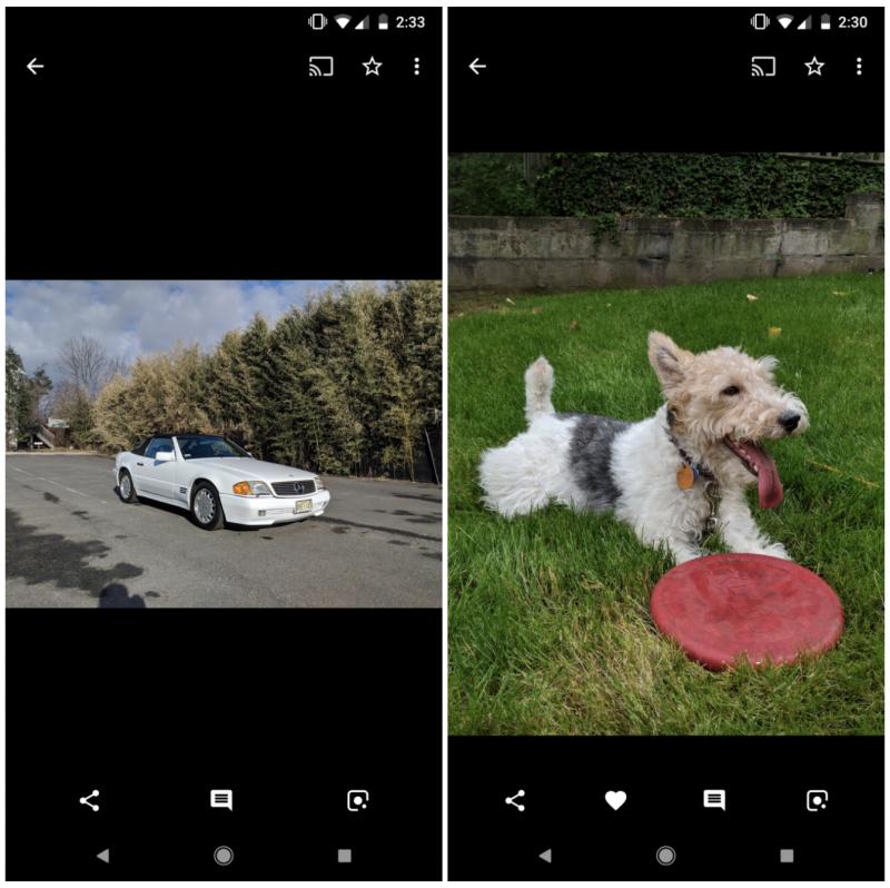 Google Kuvat -sovellukseen ilmestyy tykkäysmahdollisuus. Kuva: Android Police.